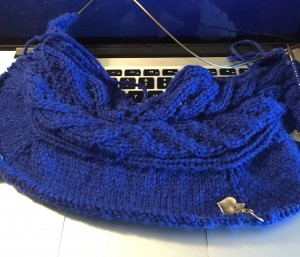 Edin Cardigan Progress